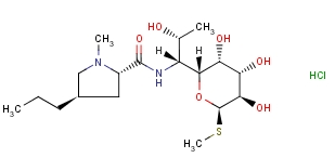 Lincocin Hydrochloride