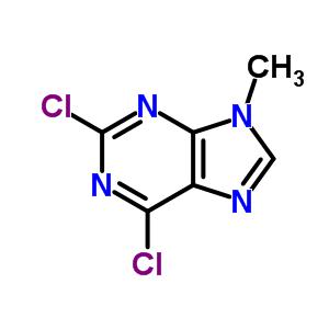 2382-10-7 2,6-Dichloro-9-methyl-9H-purine