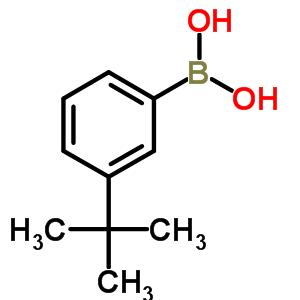 (3-tert-butylphenyl)boronic acid